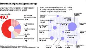 Struktura kapitału zagranicznego