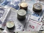 MFW: Udział szarej strefy w gospodarce wynosi prawie 30 proc.