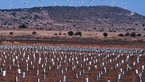 Farma wiatrowa na Wzgórzach Golan, Izrael.