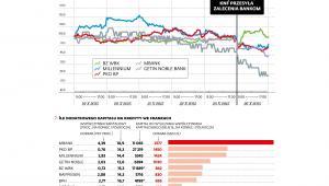 Banki - kurs akcji i kapitał na kredyty we frankach