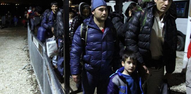 Imigranci w Serbii