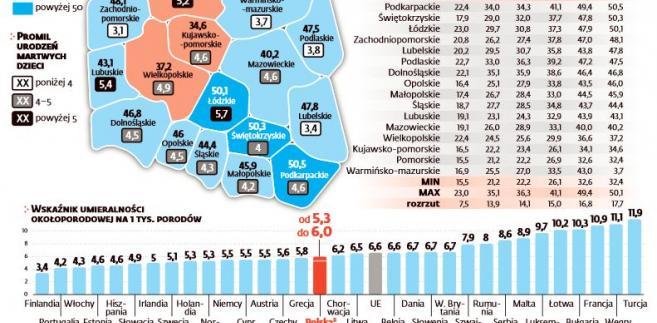 Porody w Polsce i Europie