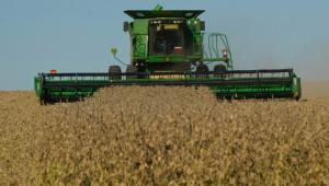 Zbiory soi na polach w Ohio. Fot. Bloomberg