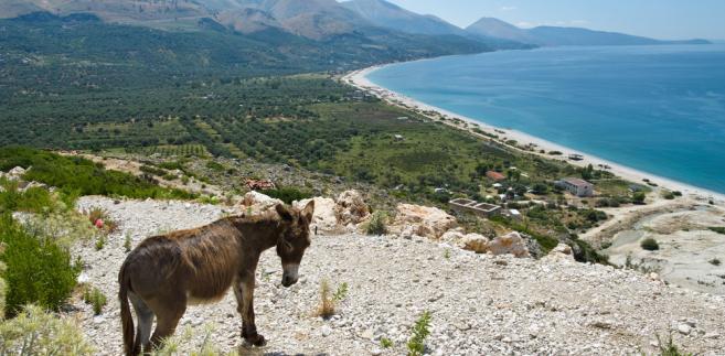 Albania, Bałkany