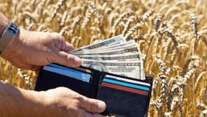 rolnicy, zboże, pieniądze, rolnictwo