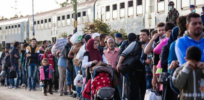 uchodźcy, migracja