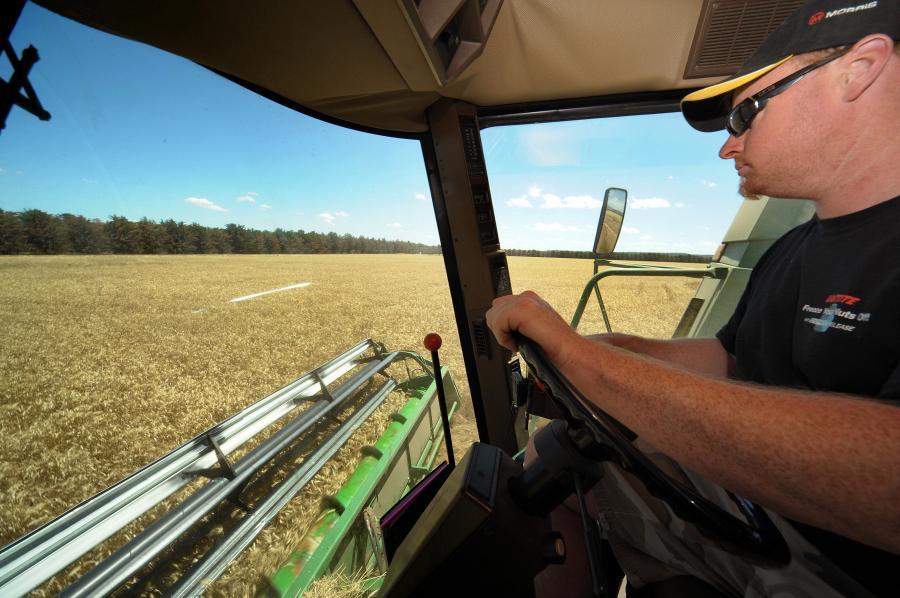Słaby złoty podbił ceny zbóż. fot. Bloomberg